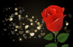 Rosa e corações do vermelho no fundo preto Imagem de Stock