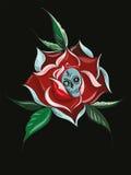 Rosa e crânio Fotos de Stock Royalty Free