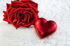 Rosa e cuore rosso sulla neve bagnata del ghiaccio, fuoco selettivo Fotografie Stock Libere da Diritti