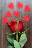 Rosa e cuori rosso scuro Fotografia Stock Libera da Diritti