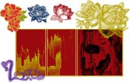 Rosa e donne Immagini Stock
