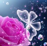 Rosa e farfalla Fotografie Stock