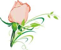 Rosa e filial ilustração do vetor