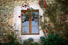 Rosa e finestra rampicanti Immagine Stock Libera da Diritti