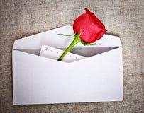 Rosa e letra vermelhas foto de stock