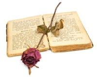 Rosa e libro Fotografie Stock Libere da Diritti