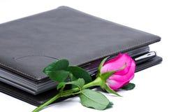 Rosa e libro di rosa Immagini Stock Libere da Diritti