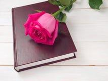 Rosa e livro do rosa Fotografia de Stock