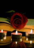 Rosa e livro do vermelho imagem de stock