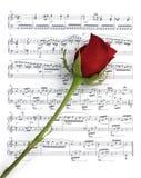 Rosa e música Fotos de Stock Royalty Free