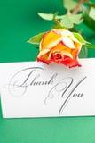 Rosa e o cartão assinados agradecem-lhe Fotos de Stock Royalty Free