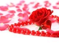 Rosa e pétalas com os grânulos da American National Standard do coração   Fotografia de Stock