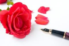 Rosa e penna Fotografia Stock Libera da Diritti