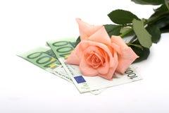 Rosa e soldi Immagine Stock Libera da Diritti