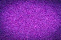 Rosa e struttura di lana porpora del panno Fotografia Stock