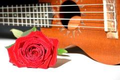 Rosa e uquelele do vermelho Foto de Stock