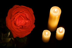 Rosa e velas Fotografia de Stock