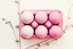 Rosa easter ägg i rosa äggask, på vit bakgrund; easter Royaltyfri Fotografi