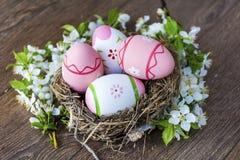 Rosa easter ägg i verkligt rede med körsbärsröda blomningar på en träbakgrund Arkivbild