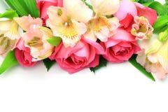 Rosa ed alstroemeria Immagini Stock