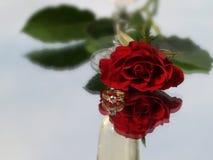 Rosa ed anello di diamante Immagine Stock Libera da Diritti