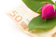Rosa ed euro Fotografie Stock