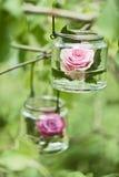 Rosa em um vidro Imagens de Stock Royalty Free