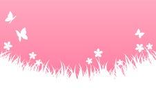 Rosa färg fjädrar bakgrund vektor illustrationer