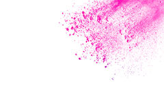Rosa färg-lilor pudrar explosion Royaltyfri Bild