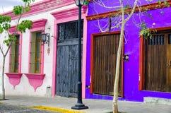 Rosa färg- och blåtthus i Oaxaca royaltyfri fotografi