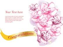 Rosa färg- och lilaros med text Arkivfoton