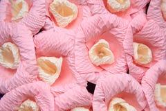 Rosa färg skyler över brister blommor Arkivfoto