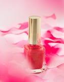 Rosa färg spikar polskt Royaltyfri Fotografi