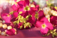 Rosa färgblommor och pärlor Royaltyfria Bilder