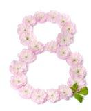 Rosa färgen blommar i en form av nummer åtta Royaltyfria Foton