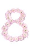 Rosa färgen blommar i en form av nummer åtta Royaltyfri Fotografi