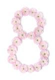 Rosa färgen blommar i form av nummer åtta Arkivfoto