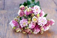 Rosa färgen blommar på träsurfasen Royaltyfri Fotografi