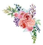 Rosa färger för blom- rosa för solros för vattenfärgtappning för pion blomma för Gerbera och för abstact eller sidasamman stock illustrationer