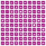 100 rosa färger för grunge för transportsymboler fastställda stock illustrationer
