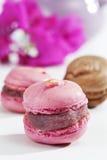 Rosa färger och chokladmakron royaltyfria foton