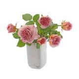 Rosa färger och krämrosor i vas Arkivbild