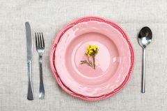Rosa färger pläterar på tabellen med instrument, bästa sikt arkivfoto