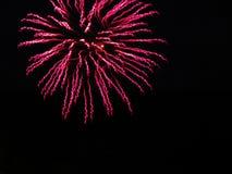 Rosa färger som snurrar strömmar av fyrverkerier, tänder upp svart himmel Fotografering för Bildbyråer