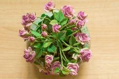 Rosa färger steg krukor på träbakgrund royaltyfri foto