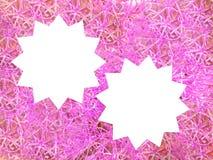 Rosa färgfärgram Royaltyfri Bild