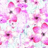 Rosa färgpapegojor och blommor Stock Illustrationer
