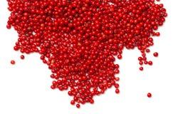 Rosa färgpeppar Röda pepparkorn som isoleras på vit bakgrund Arkivbild