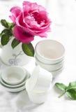 Rosa färgros i en glass vas och en vit keramisk bunke på en vit yttersida royaltyfria bilder