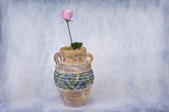 Rosa färgros i stor keramisk vas på ljus grungy bakgrund Arkivfoto